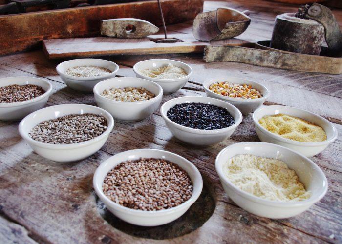 premium grains for sale
